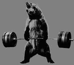 Bear and Barbell
